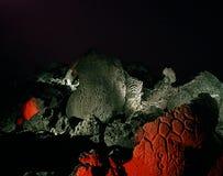 Petroglyphpaneler Arkivbilder