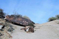 Petroglyphs στο φαράγγι αμπέλων στοκ εικόνες