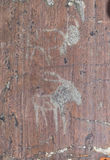 Petroglyphs της ηλικίας χαλκού στοκ φωτογραφία με δικαίωμα ελεύθερης χρήσης