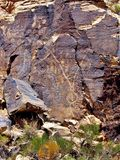 Petroglyphs της Gap Parowan στη Γιούτα Στοκ Εικόνα