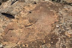 Petroglyphs of Altay. Ancient rock paintings in the Altai Mountains Royalty Free Stock Image