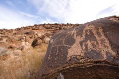 Petroglyphs of Anasazi Canyon Stock Image