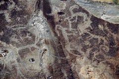 Petroglyphs, carvings antigos da rocha em pedras de Altai fotos de stock