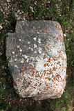 Petroglyphs. In Chuy region, Kyrgyzstan Royalty Free Stock Image