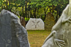 Petroglyphs de Taino Fotos de Stock Royalty Free