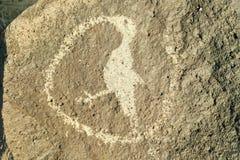Petroglyphs do nativo americano que caracterizam uma imagem de um pássaro no monumento nacional do Petroglyph, fora de Albuquerqu Imagem de Stock