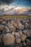 Petroglyphs do parque nacional de Saguaro Imagens de Stock