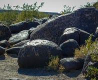 Petroglyphs em rochas dos povos pré-históricos imagem de stock royalty free