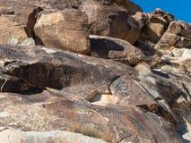Petroglyphs, Grapevine Canyon stock photography