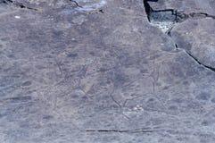 Petroglyphs of Kalbak-Tash in Altai, Siberia Stock Images