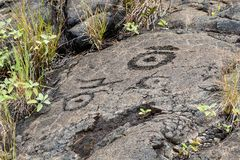 Petroglyphs in lava rock at Pu`uloa along Chain of Craters road, in volcano National Park on the island of Hawaii. Carvings are 40. Petroglyphs at Pu`uloa Long stock photo