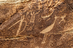Petroglyphs na rocha do jornal, floresta hirto de medo, o Arizona Imagens de Stock Royalty Free
