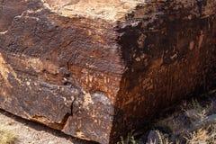 Petroglyphs på tidningen vaggar, förstenades skogen, Arizona Royaltyfri Foto