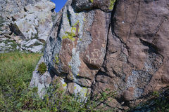 Petroglyphs on a rock. At Altai Region in Siberia, Russia Royalty Free Stock Photography