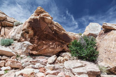 Petroglyphs on the rock in Arches National Park royalty free stock image