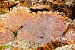 Petroglyphs in Tamgaly Tas, Kazakhstan Royalty Free Stock Images