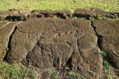 Petrogryphs antigo do atum e do tubarão chamou Papa Mango em Papa Vaka Archaeological Site, Ilha de Páscoa, o Chile fotografia de stock