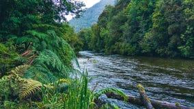 Petrohue-Fluss in Chile lizenzfreie stockfotos