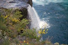 Petrohue Waterfalls, Chile Stock Image