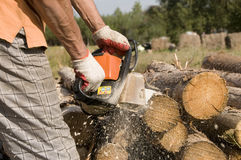 Petrol chainsaw Stock Photos