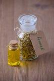 Petrolio essenziale del finocchio e una bottiglia con i semi, fuoco selettivo su di legno scuro Fotografie Stock Libere da Diritti
