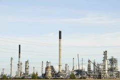 petrolväxt Arkivbilder