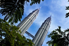 Petronas twin tower. Surrounded by trees Stock Photo