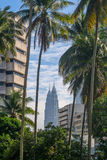 Petronas Twin Towers in between buildings and coconut trees Royalty Free Stock Photography