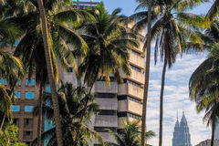 Petronas Twin Towers in between buildings and coconut trees Stock Photos
