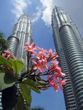 Petronas Twin Towers with flowers in the foregroun Royalty Free Stock Photo