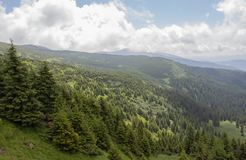 From Petros and Hoverla to Pop Ivan on the Montenegrin ridge stock image