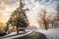 Petrovaradin Fortress in the fog in winter. Ambience of the Petrovaradin fortress in winter Royalty Free Stock Photos