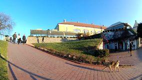 Petrovaradin fortress and the tree without leaves in autumn day in Serbia, city of Petrovaradin - Novi Sad. stock video footage