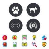 Pets иконы Лапка кота с знаком муфт Стоковое Изображение
