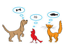 Pets Stock Image