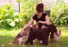Pets. Woman with pets in park Stock Image