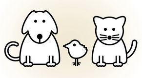 Pets. Dog, cat and bird Royalty Free Stock Images