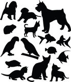 Pets. Collection of pets silhouettes (vector Stock Photos