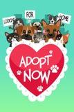 Pets For Adoption Poster stock illustration