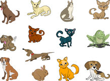 Pets, cats and dogs. Some cats and dogs (plus a rabbit and a frog thrown in vector illustration