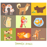 Pets, Cats, Dogs and their Actions, Emotions. Pets, Cats, Dogs and their Actions and Emotions. Vector Set Royalty Free Stock Photos