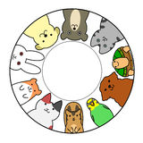 Pets in circle with copy space Stock Images
