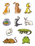 Pets collection. Cartoon illustration of a pets collection Royalty Free Stock Photography