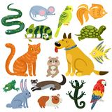 Pets Colorful Icons Set. Pets set of colorful icons with cat and dog, fishes, rodents, parrots and reptiles isolated vector illustration Stock Illustration