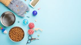Pets and cute animals, pets, cute cats, food and accessories for cat`s life, Flat lay, space for a dresser, on a blue background. stock images