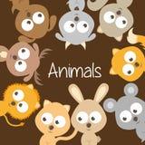 Pets design. Over brown background vector illustration vector illustration