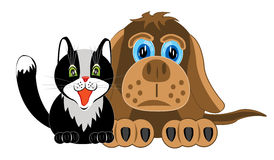 Dog and cat on white background Royalty Free Stock Photography