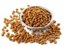 Pets food Stock Images