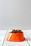 Pets food on cat bowl. Dry feed on orange bowl. Royalty Free Stock Images