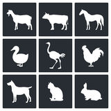 Pets icon collection Royalty Free Stock Photos